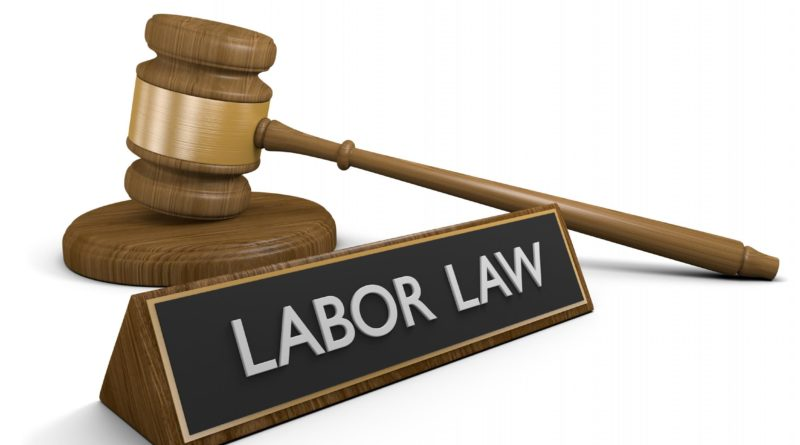 Immigration Lawyers - What Are They Good for?